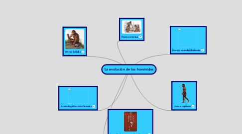 Mind Map: La evolución de los homínidos