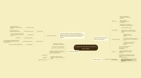 Mind Map: Conducción del estímulo eléctricodel corazón