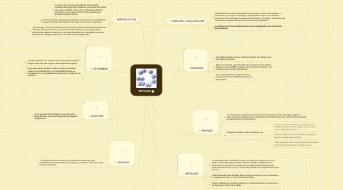 Mind Map: MITOSIS
