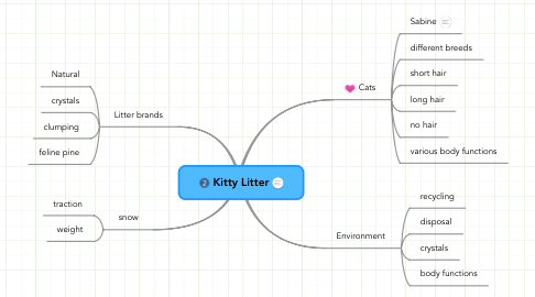 Mind Map: Kitty Litter