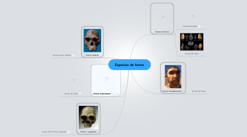Mind Map: Especies de homo