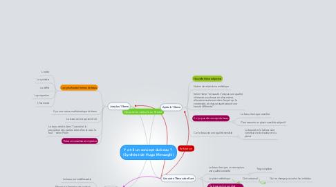 Mind Map: Y a-t-il un concept du beau ?  (Synthèse de Hugo Menzaghi)