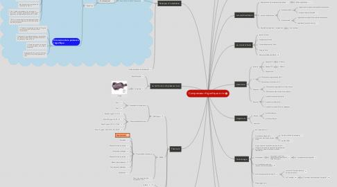 Mind Map: Compresseur frigorifique à vis