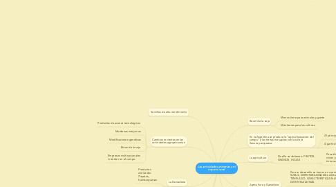 Mind Map: Las actividades primarias y el espacio rural