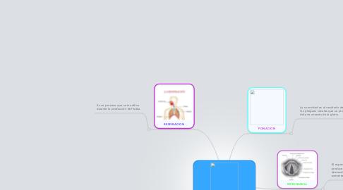 Mind Map: Procesos Motores Básicos del habla