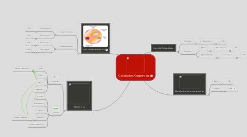 Mind Map: Cavidades Corporales