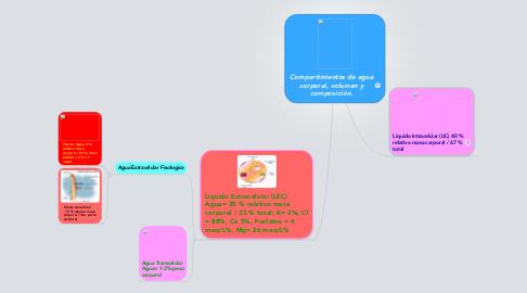 Mind Map: Compartimientos de agua corporal, volumen y composición.
