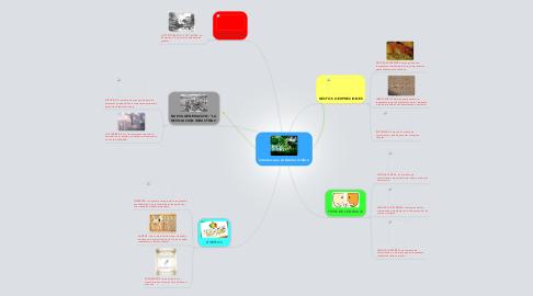 Mind Map: Introduccion Al Diseño Grafico