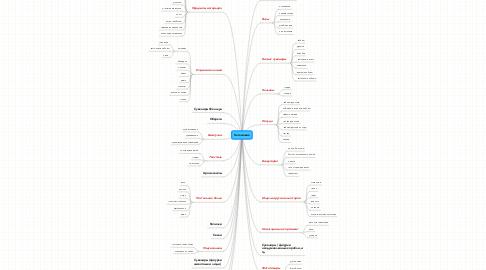Mind Map: Каталожик