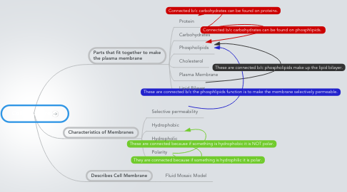 Mind Map: Cell Structure