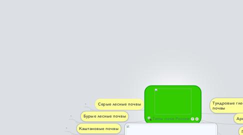 Mind Map: Типы почв России
