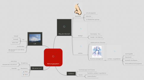 Mind Map: Atmungssystem
