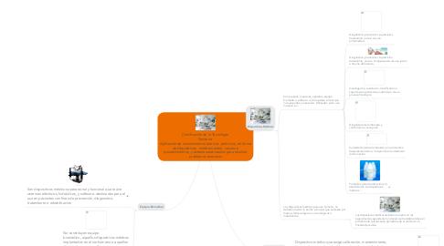 Mind Map: Clasificación de la Tecnología Sanitaria  Aplicación de conocimientos teóricos  prácticos, en forma de dispositivos,  medicamentos,  vacunas, procedimientos, y sistemas elaborados para resolver problemas sanitarios