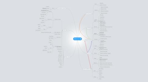 Mind Map: Modelo 4 + 1