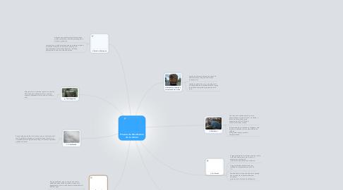 Mind Map: Proceso de Manufactura de La Azúcar