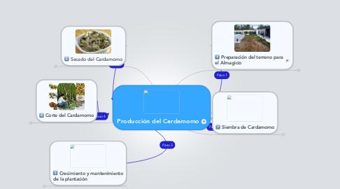 Mind Map: Producción del Cardamomo