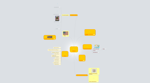 Mind Map: THE USA