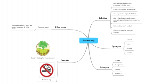 Mind Map: Prudent (adj)