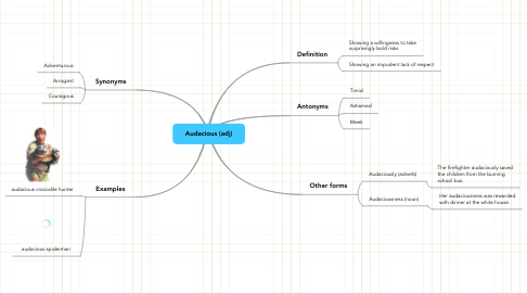 Mind Map: Audacious (adj)