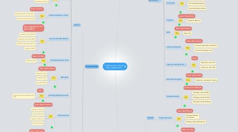 Mind Map: Catalogue des services MM (130322.0907)