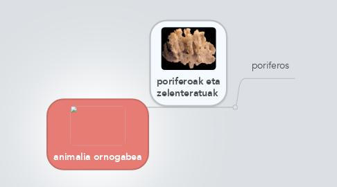 Mind Map: animalia ornogabea
