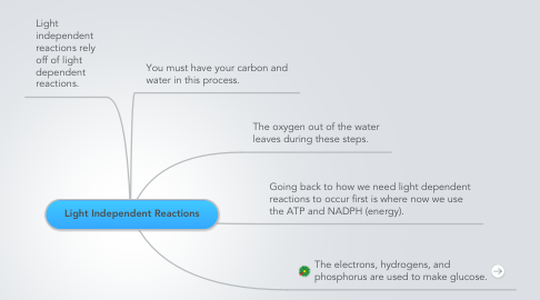 Mind Map: Light Independent Reactions