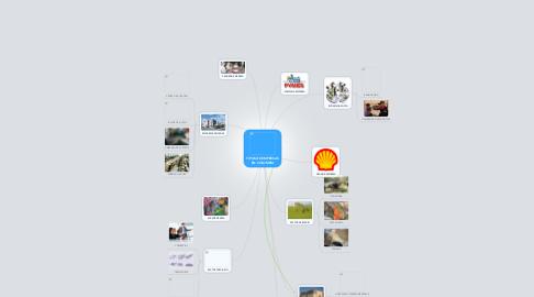 Mind Map: TIPOS DE EMPRESAS EN COLOMBIA