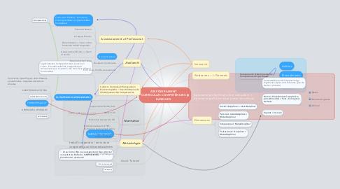 Mind Map: ASSESSORAMENT CURRICULAR: COMPETÈNCIES BÀSIQUES