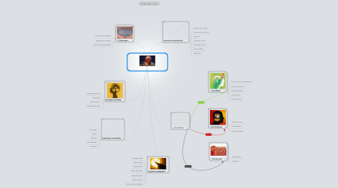 Mind Map: A CEGUEIRA DO CONHECIMENTO