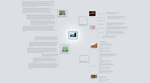 Mind Map: RIVERS