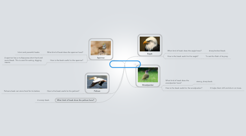 Mind Map: 7I Beaks of Birds