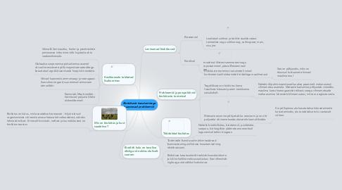 Mind Map: Biokütuste kasutamisega kaasnevad probleemid.