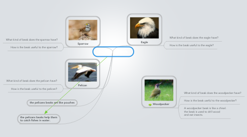 Mind Map: 2C Beaks of Birds