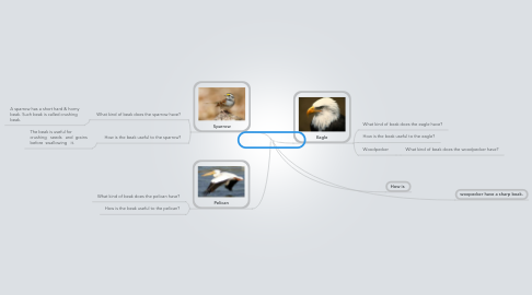 Mind Map: 3D Beaks of Birds