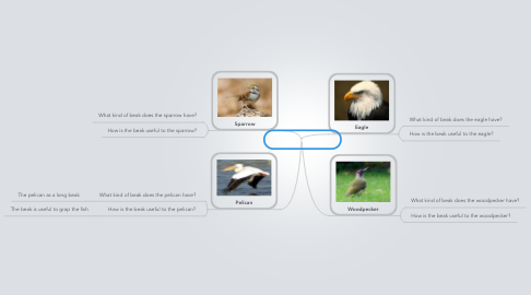 Mind Map: 3F Beaks of Birds