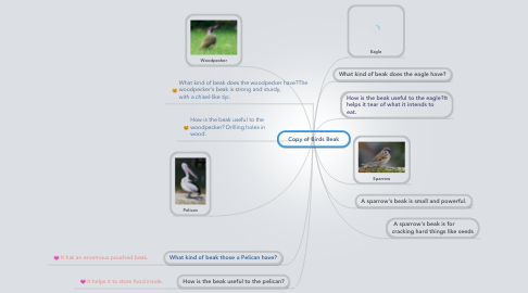 Mind Map: Copy of Birds Beak