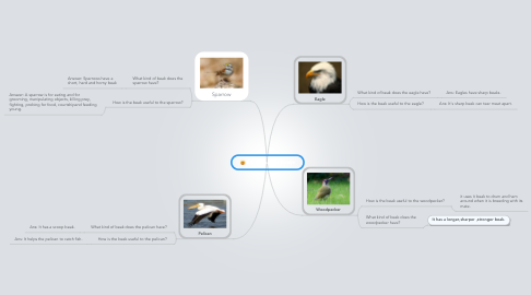 Mind Map: 8A Birds And Beaks