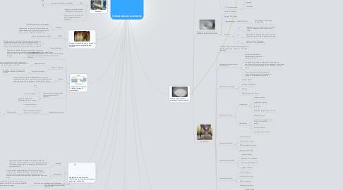 Mind Map: TECNOLOGÍA DE ALIMENTOS