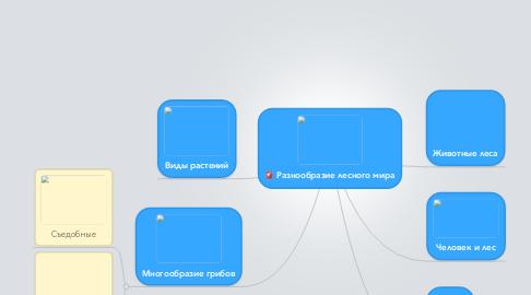 Mind Map: Разнообразие лесного мира