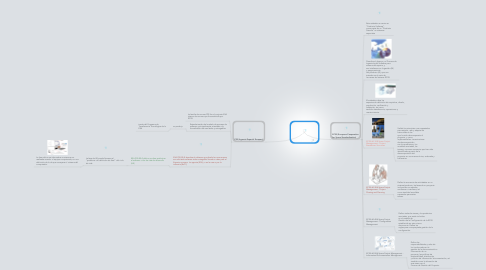 Mind Map: PSS y ECSS