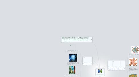 """Mind Map: """"La persona humana y suactuar en la sociedad""""."""
