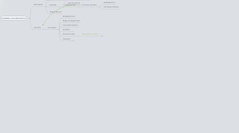 Mind Map: CAPÍTULO IV ensinar a enidade terrena