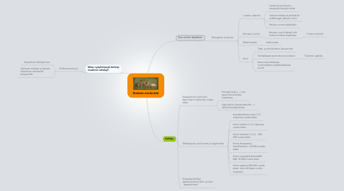 Mind Map: Ihmisen evoluutio!