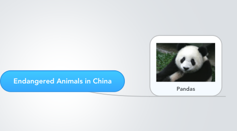 Mind Map: Endangered Animals in China
