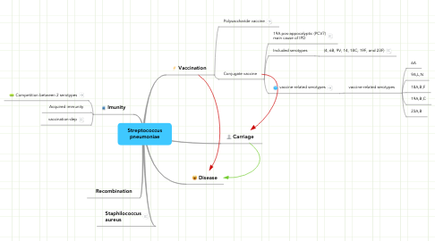 Mind Map: Streptococcus pneumoniae