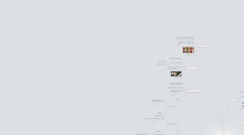 Mind Map: IMAGEN E IMAGEN DIGITAL