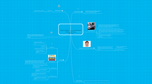 Mind Map: CASO CLINICO 2: Quielos-palatosquisis unilateral por: Yuriko Uchimura