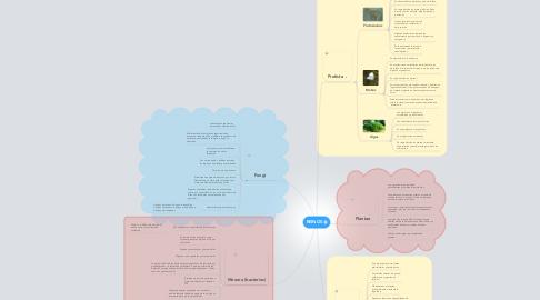 Mind Map: REINOS