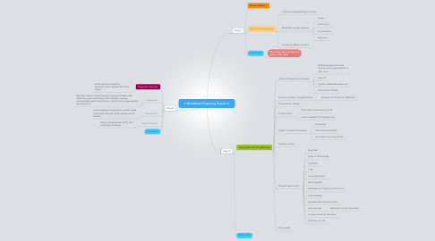 Mind Map: A Breathless Pregnancy Session 2