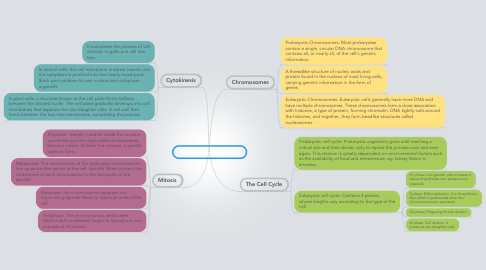 Mind Map: The Process of Cell Division